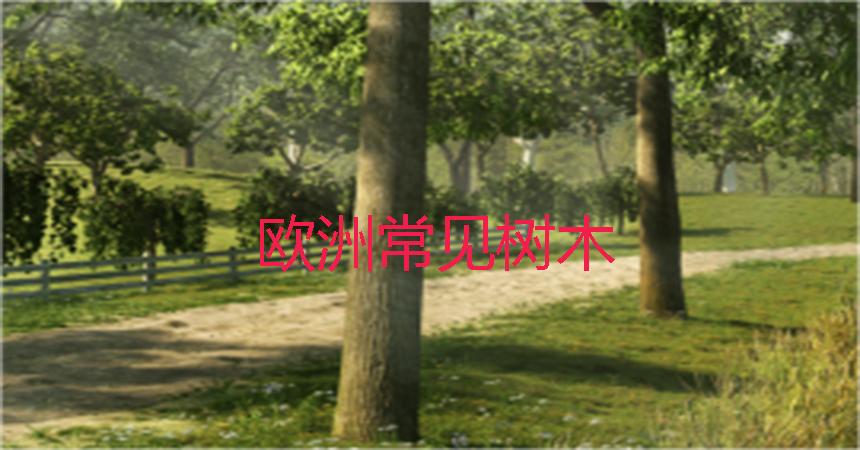 https://apps-prod.oss-cn-beijing.aliyuncs.com/sw-software/image/1908/b21d197c67e62af6c7908c67a87d73d2.jpg